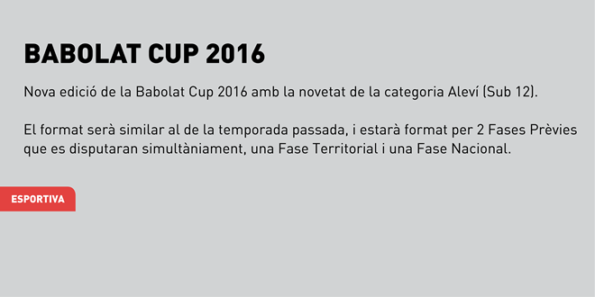Babolat CUP 2016